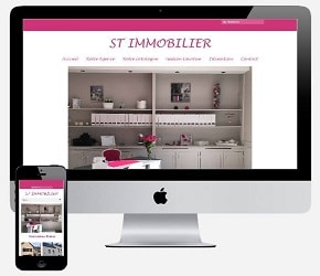 ST Immobilier